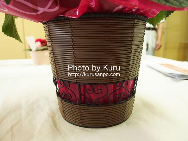 千趣会(せんしゅかい)・e87.com(イイハナ・ドットコム)『母の日 鉢植え「アジサイ KEIKO~希少な新品種!~」』
