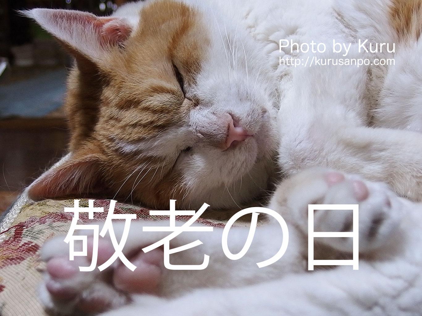京都・宇治の伊藤久右衛門の敬老の日ギフトは、宝箱のようなお菓子箱♪